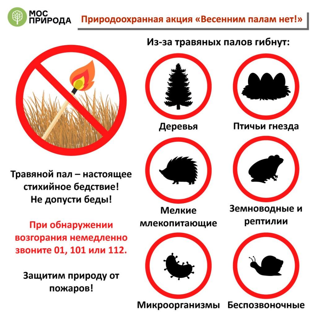 Как вести себя на природных территориях: стартует акция «Весенним палам нет!»