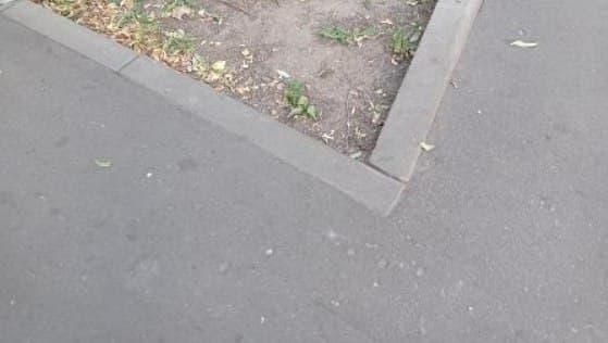 На Сормовской улице газон привели в порядок